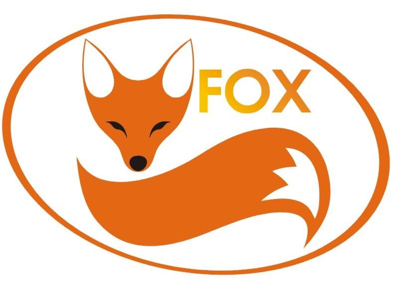 naklejki-na-drzwi-fox-jpg